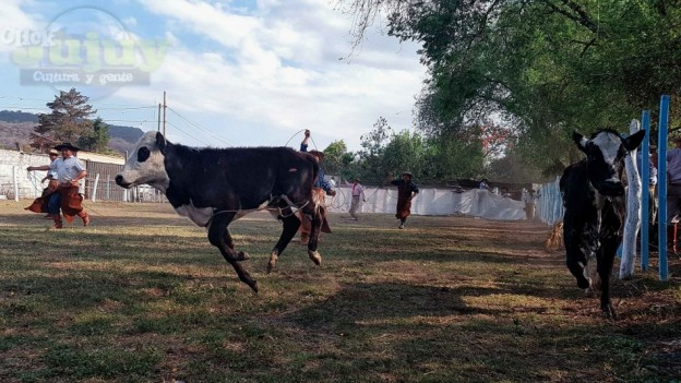 1-75-Aniversario-del-Centro-Tradicionalista-Gaucho-dePerico-de-San-Antonio-38