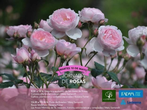 1-Jonada rosas – invitación