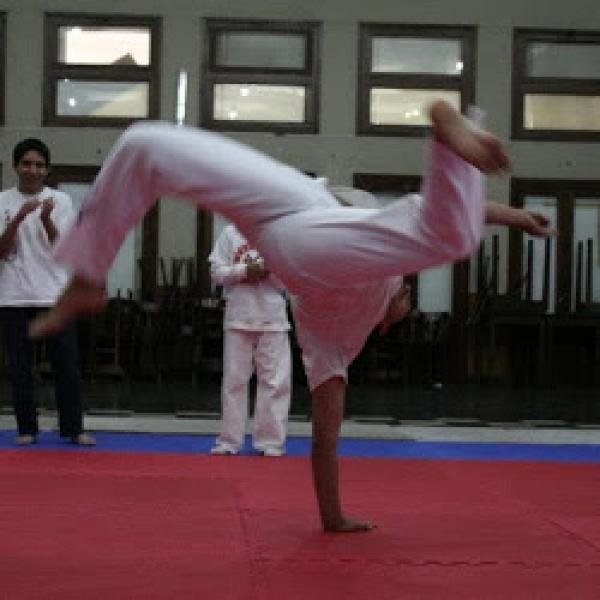 1-taller-de-capoeira_15808