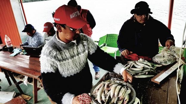 2da Fecha del Torneo Anual que organiza el Club de Pescadores de la Ciénag (2)