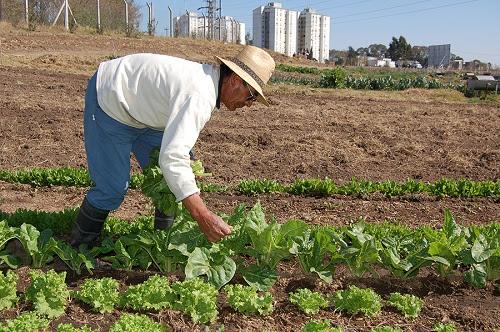 charla-sobre-produccion-agricola-periurbana