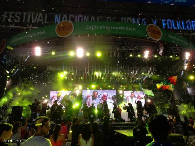 Carnaval a caballo – memo vilte