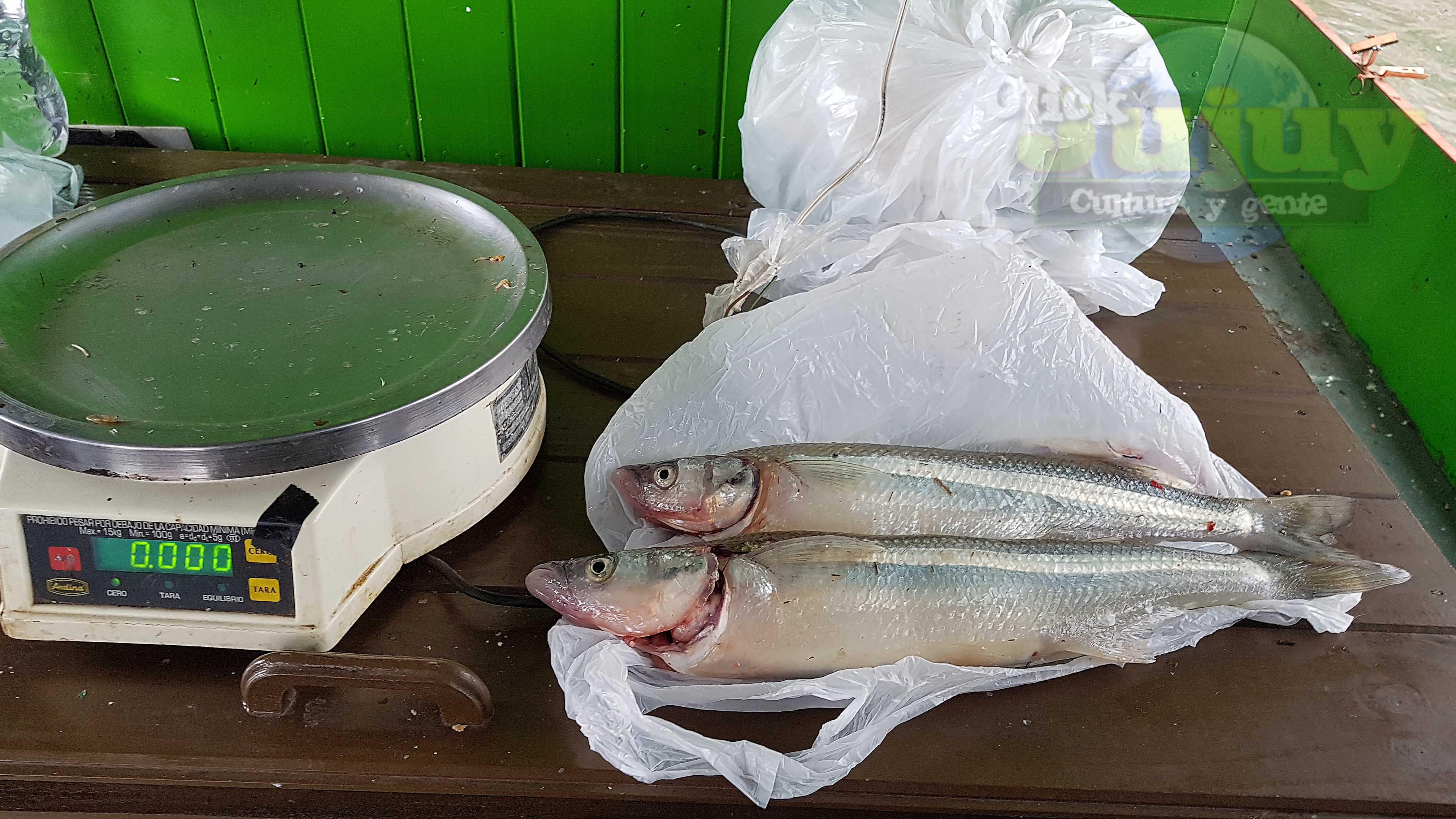 Concurso de pesca pejerrery - Dique Las Maderas 3