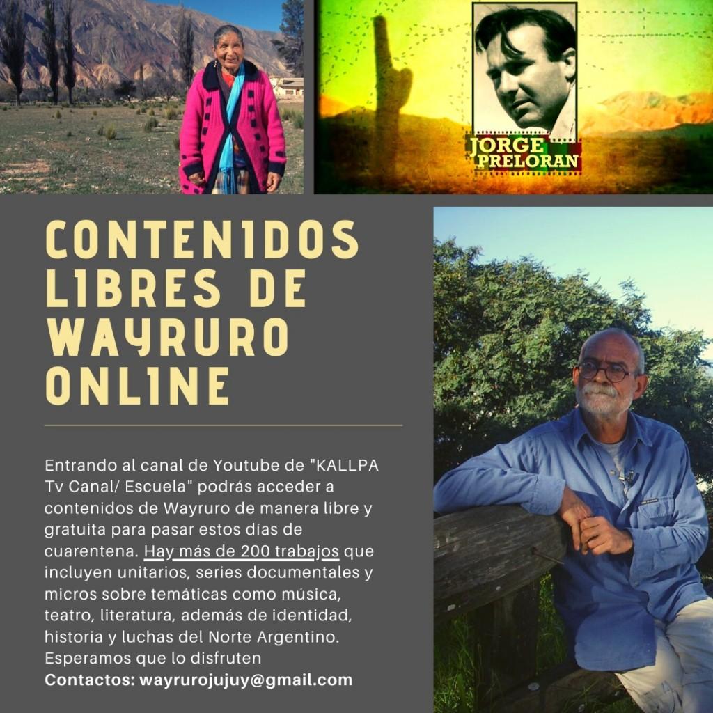 Contenidos wayruro