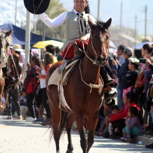 Desfile Gaucho 23 de Agosto 2019 - 210