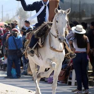 Desfile Gaucho 23 de Agosto 2019 - 223
