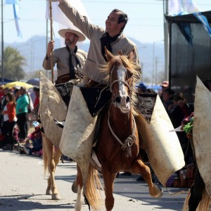 Desfile Gaucho 23 de Agosto 2019 - 228