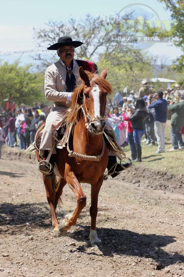 Desfile Gaucho Fiesta Patronal en paños 2017-5