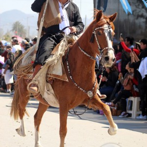 Desfile-gaucho-23-de-agosto-2019-103