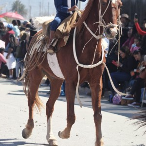Desfile-gaucho-23-de-agosto-2019-104