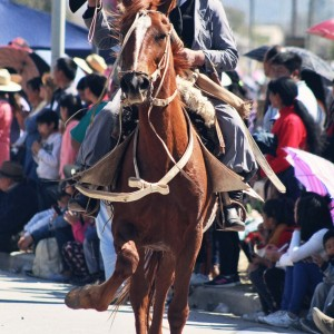 Desfile-gaucho-23-de-agosto-2019-121