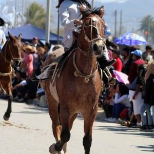 Desfile-gaucho-23-de-agosto-2019-135