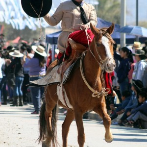 Desfile-gaucho-23-de-agosto-2019-162