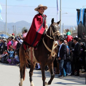 Desfile-gaucho-23-de-agosto-2019-24