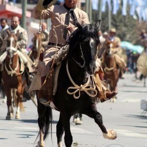 Desfile-gaucho-23-de-agosto-2019-50