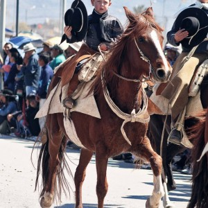 Desfile-gaucho-23-de-agosto-2019-86