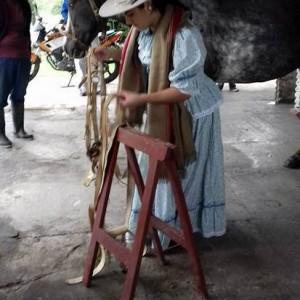 Elección Paisana Provincial en Tucuman (3)