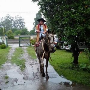 Elección Paisana Provincial en Tucuman (6)