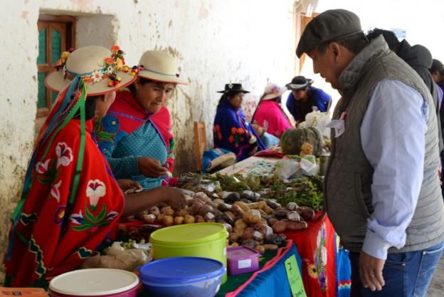 Expositores-en-la-Feria-de-los-Cultivos-Andinos-1140×762