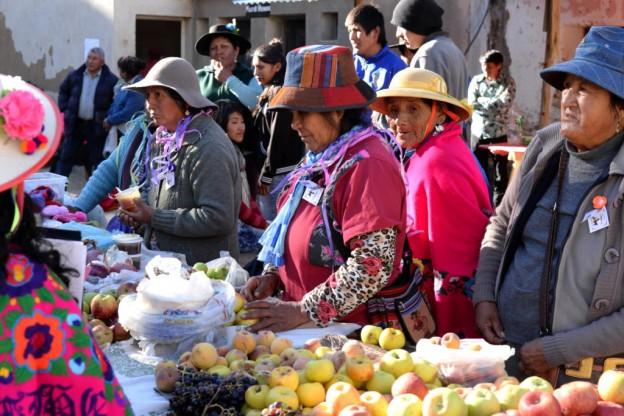 Feria-de-cultivos-andinos-en-Caspala-1024×684