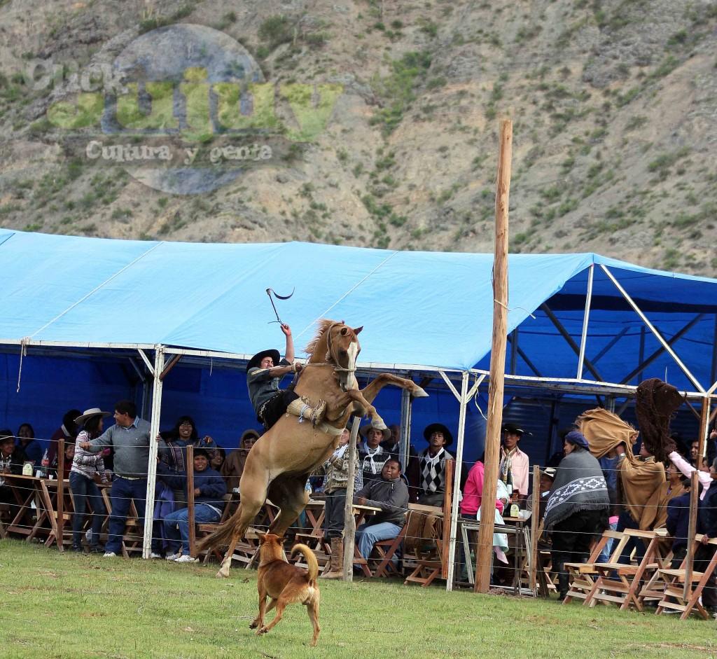 Festival-bajo-los-cielos-de-tumbaya