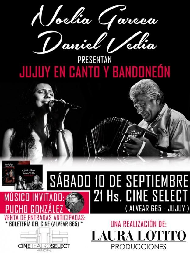 jujuy-en-canto-y-bandoneon