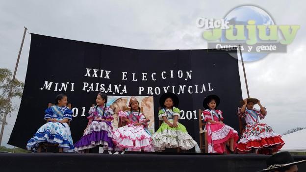 Mini Paisana Provincial 14