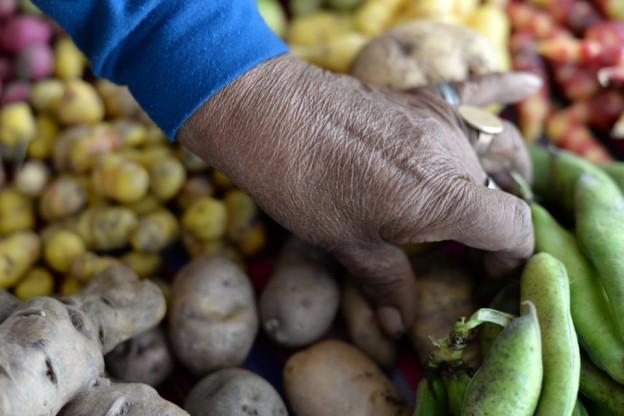 Productora-en-la-Feria-de-Cultivos-Andinos-960×641
