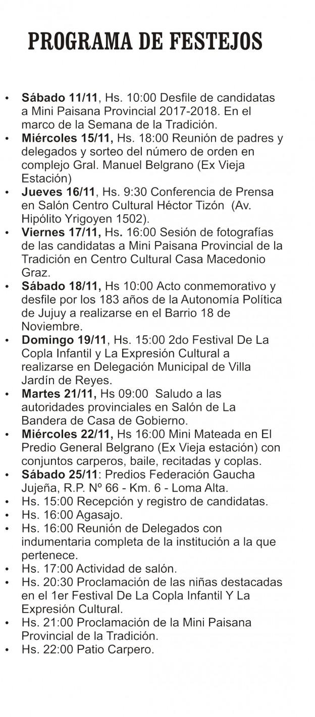 Segundo Festival de la Copla y la Expresión Cultura y la Vigésimo Novena Edición de La Mini Paisana Provincial de la Tradicion (3)