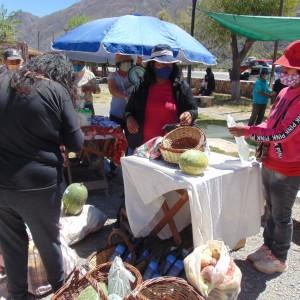 Tumbaya realizó la Primer Feria del Ciclo Agrícola denominada Del campo a tu mesa (14)