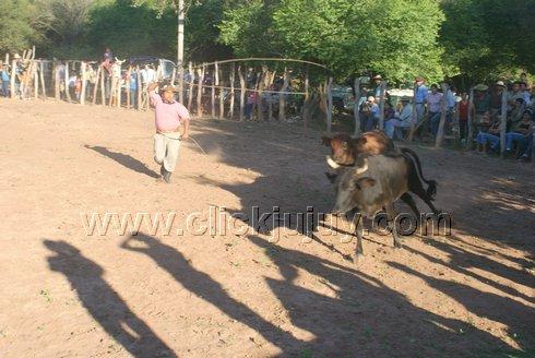 Festival de la Yerra y el Folklore – El Acheral