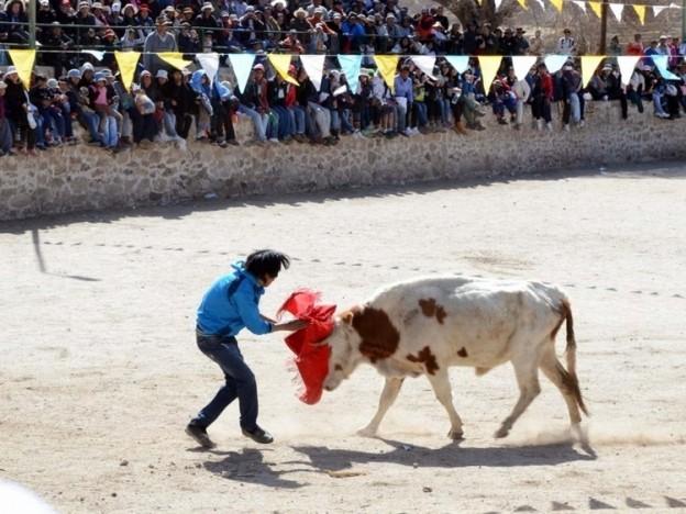 toreo-de-la-vincha-en-plaza-pedro-quipildor-de-casabindo_11998